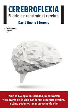 Brainplasticity