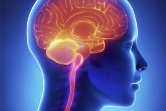 10 cosas que cambian tu cerebro